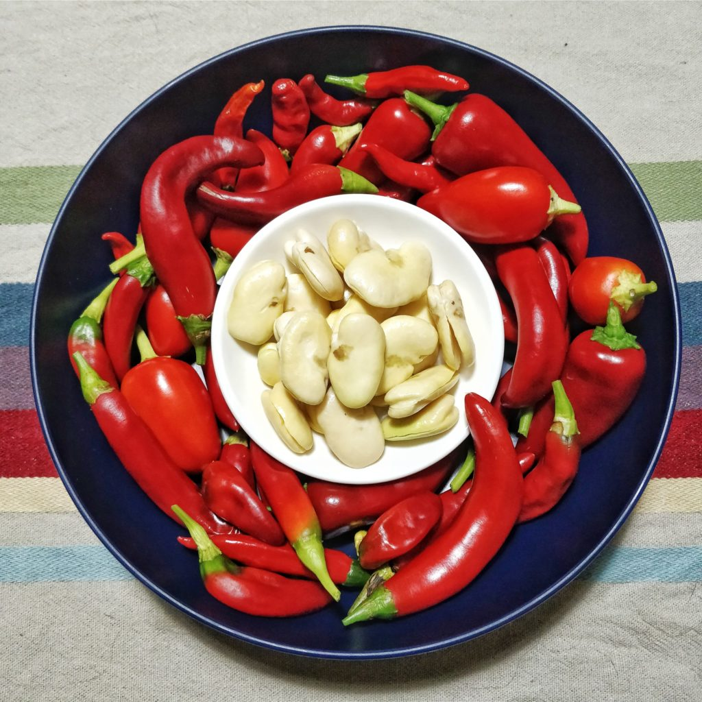 Bowl of chilies with a smaller bowl of fava beans nestled inside.