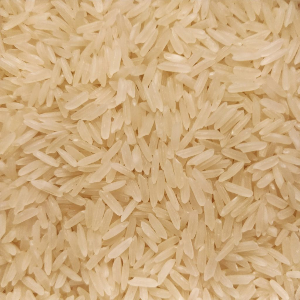 Jasmine rice before toasting